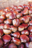 Sweet chestnuts - marron in basket Royalty Free Stock Image