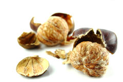 Sweet chestnuts. With peels on white background Royalty Free Stock Photo