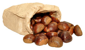 Sweet Chestnuts. Pile of uncooked sweet chestnuts in shells and paper bag, isolated on a white background Royalty Free Stock Images