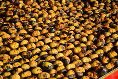 Sweet chestnuts. Roasted colorful chestnuts in street Stock Photos