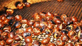 Sweet chestnuts on a silvered grill, background Royalty Free Stock Photography