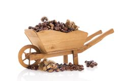 Sweet chestnuts in wheel barrow. Wheel barrow full with sweet chestnuts isolated over white background Stock Images
