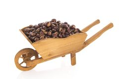 Sweet chestnuts in wheel barrow. Wheel barrow full with sweet chestnuts isolated over white background Stock Image