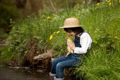 Sweet child, playing on little river with ducklings Stock Photography