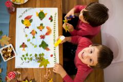 Sweet children, boys, applying leaves using glue. While doing arts and crafts in school, autumn time royalty free stock photo