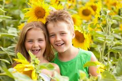 Sweet children in sunflower field Royalty Free Stock Photo