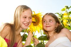 Sweet children in sunflower field Stock Images