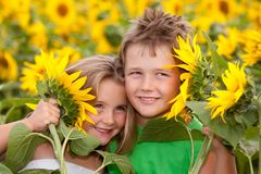 Sweet children in sunflower field Stock Photo