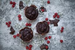 Chocolate brownie and raspberry Royalty Free Stock Images
