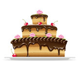 Sweet chocolate cake for birthday. Holiday. Vector illustration on white background EPS10. Transparent objects used for shadows and lights drawing Royalty Free Stock Photos