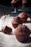 Sweet chocolate muffin Stock Photo