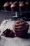 Sweet chocolate muffin Royalty Free Stock Photo