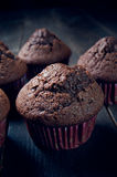 Sweet chocolate muffin Royalty Free Stock Images