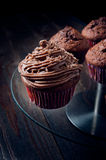 Sweet chocolate muffin Stock Images