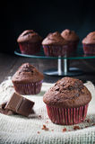 Sweet chocolate muffin Royalty Free Stock Photos