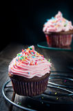 Sweet chocolate muffin Royalty Free Stock Image