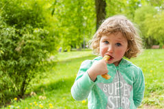 Sweet chocolate snack, Luxembourg. Spring Stock Images