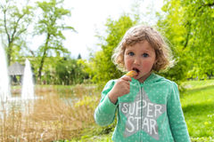 Sweet chocolate snack, Luxembourg. Spring Stock Photo