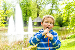 Sweet chocolate snack, Luxembourg. Spring Stock Image