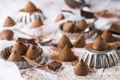 The sweet chocolate truffles. And cocoa powder royalty free stock images
