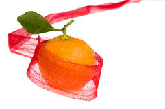 Sweet christmas. orange fruit and red bow. Sweet orange fruit and red bow on the white Stock Photography