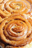 Sweet cinnamon raisin buns. Macro Stock Photos