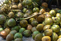 Sweet Coconut fruit Stock Images