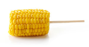 Sweet coen on the cob, isolated on white stock photography