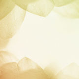 Sweet color flower petals in soft color and blur style on mulberry paper texture Stock Image
