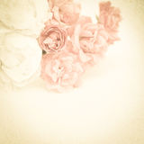 Sweet color roses on mulberry paper texture Royalty Free Stock Photos