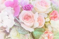Sweet color roses vintage. Background Stock Image
