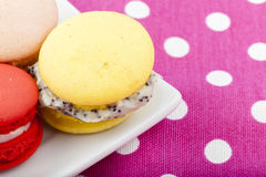 Sweet and colorful French macaroons Royalty Free Stock Images