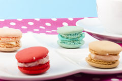 Sweet and colorful French macaroons Stock Photos