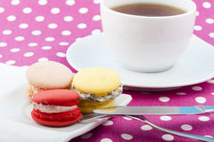 Sweet and colorful French macaroons Royalty Free Stock Photo