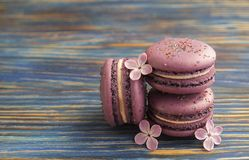 Macaron or macaroon french coockie on dark blue  background with purple flowers, pastel colors. Flat lay. Food concept. Sweet and colourful french macaroons or Royalty Free Stock Photos