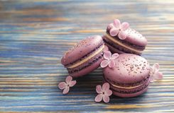 Macaron or macaroon french coockie on dark blue  background with purple flowers, pastel colors. Flat lay. Food concept. Sweet and colourful french macaroons or Royalty Free Stock Image