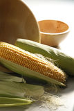 Sweet Corn. On the plain background Stock Photography