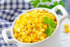 Sweet corn Stock Image