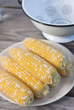 Sweet corn for BBQ party Stock Photo