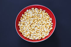 Sweet corn in the bowl Royalty Free Stock Photo