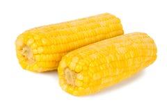 Sweet corn Stock Photo