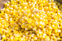 Sweet Corn with Butter Stock Images