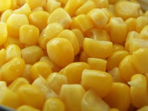 Sweet corn. A close up on sweet corn royalty free stock photography