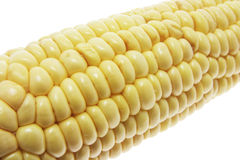 Sweet Corn Cob Royalty Free Stock Photos