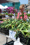 Sweet Corn on the Cob at Farmer's Market Royalty Free Stock Photos