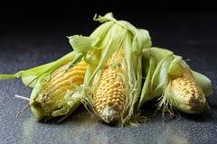Sweet corn on cobs . Sweet corn on cobs on iron table. Healthy organic food Stock Photography
