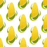 Sweet corn cobs seamless pattern Stock Photography
