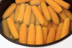 Sweet corn cooking Stock Photos
