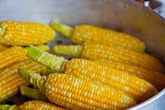 Sweet Corn, Corn On The Cob, Vegetarian Food, Maize stock photography