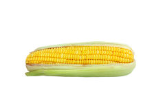 Sweet corn 2 Royalty Free Stock Photos